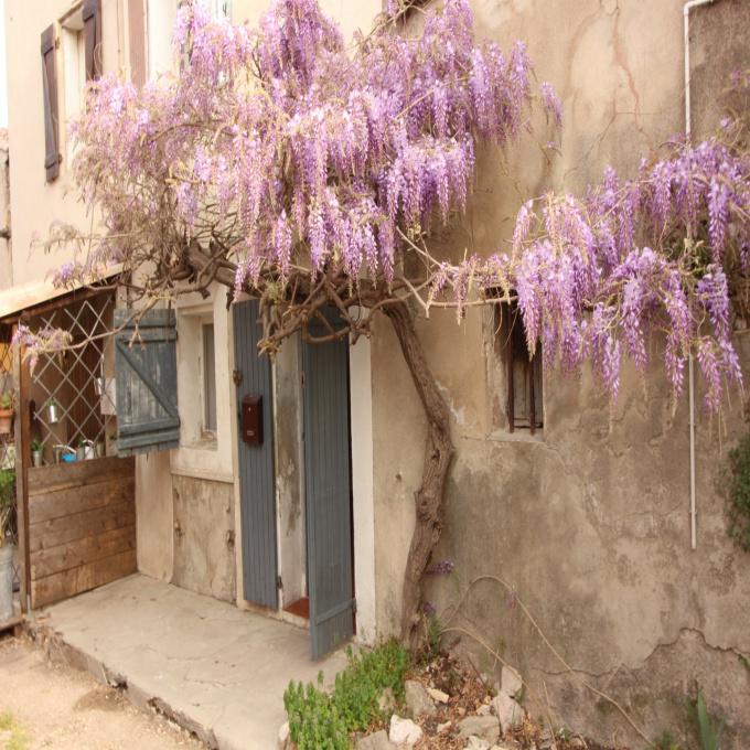 Offres de vente Maison de village La Bouilladisse (13720)
